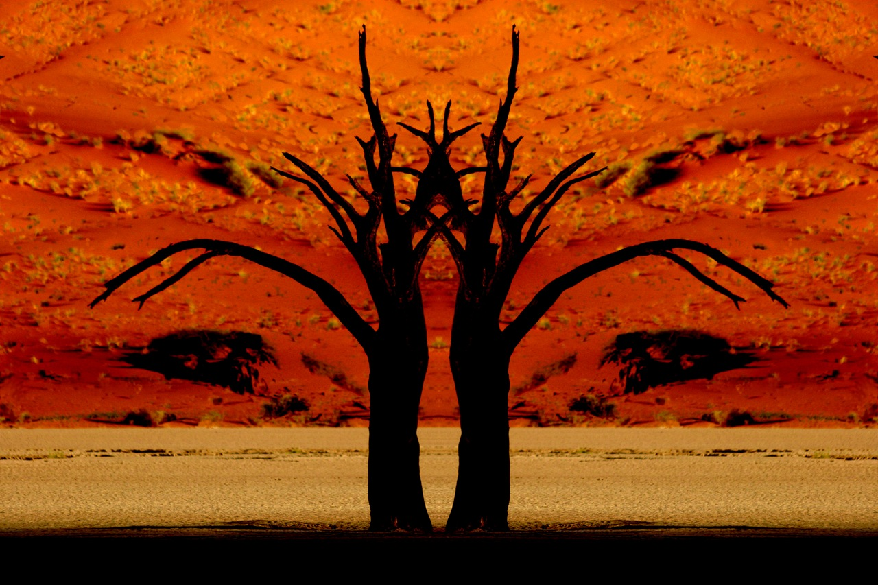 Surreal Deadvlei Trees 1.