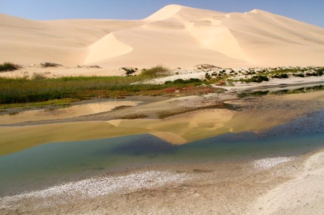 Dune reflection 1