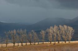 Impending Snow Storm.