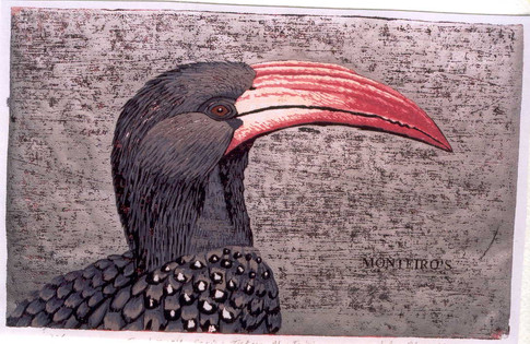 The Hornbill Series:Montero's Hornbill