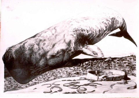 Sperm Whale Over Ruins