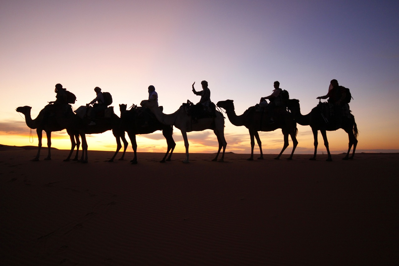 Camel Train Sunset, Morocco..
