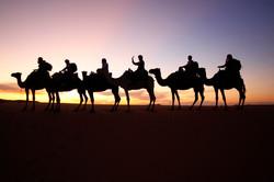 Camel Train Sunset, Morocco..