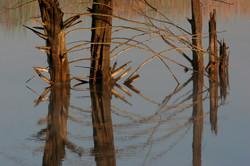 Reflective Patterns.