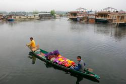 Dal Lake Vendours, Kashmir.