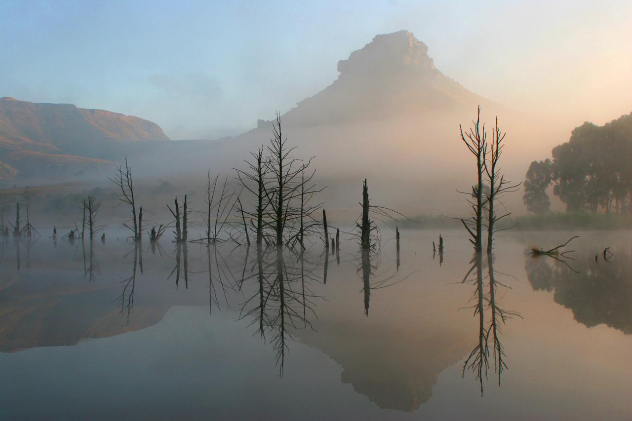 Sunrise Mist.