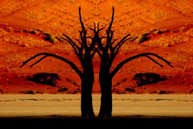 Surreal Deadvlei Trees 1.