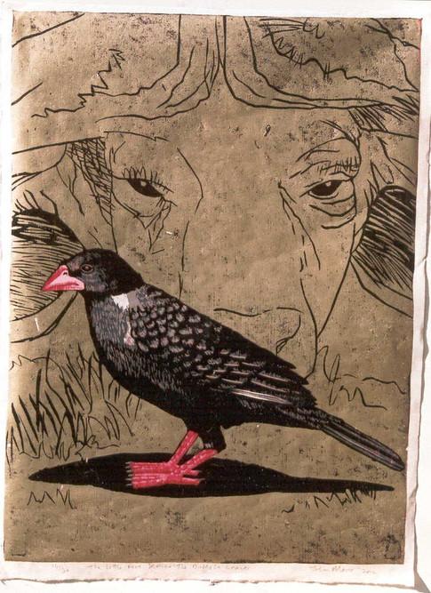The Little Five Series:Buffalo Weaver