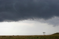 Impending Storm, Masai Mara.