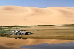 Dune Reflections.