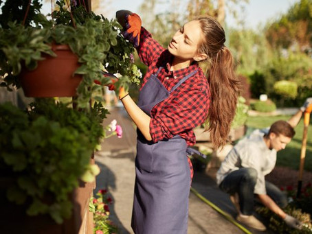 Checklist: Spring To-Dos for Homeowners
