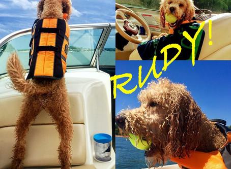 RUDY!!