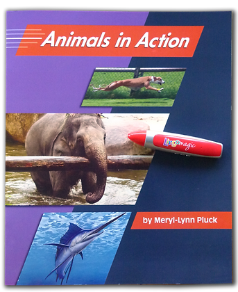 Animals in Action BIG BOOK