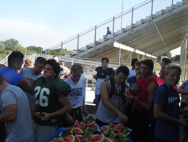 Watermelon day 3.jpeg