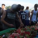Watermelon day 11.jpeg