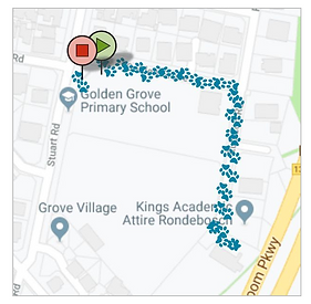 Dog Walk GPS tracked.png