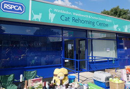 Fundraising Open Day for New RSPCA Centre