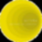Logo Altera 2020.png