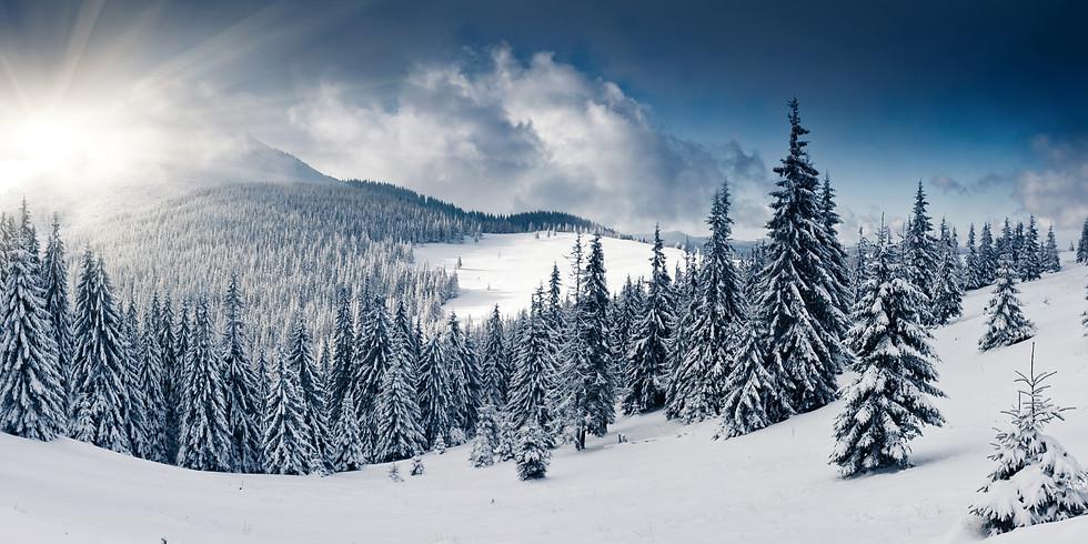 Student Snow Tubing/Skiing