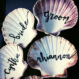 wedding guest's names hand lettered onto clam shells as place settings / favours
