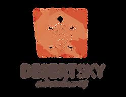 DSA New Logo png.png