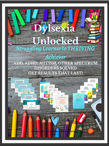 Dyslexia Unlocked Struggling Learner to