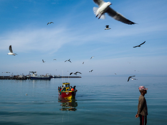 Photo Story - South Africa: Catch of the day