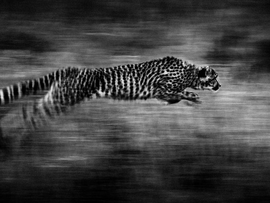 Slowing down - slow shutter speed and how to use it