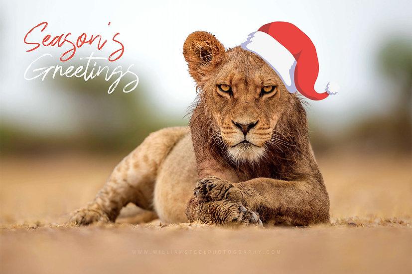 copy of Elephant Christmas