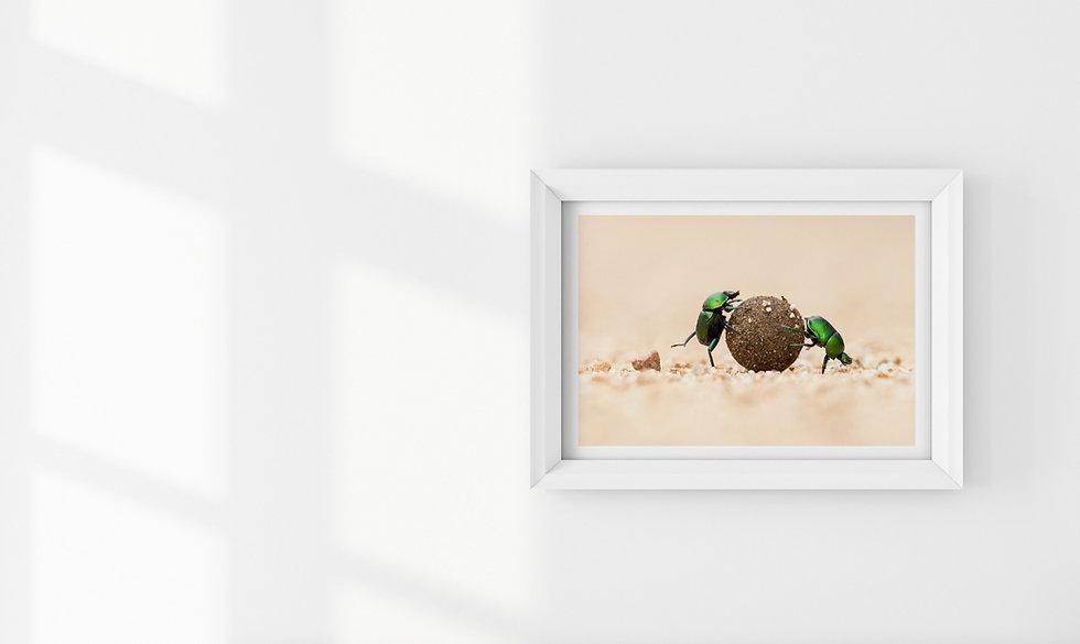 Fine art print - william steel photography - signature series - portfolio