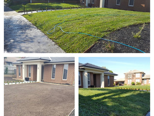 Turf Installation and Landscaping