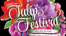The Tesselaar Tulip Festival 2015