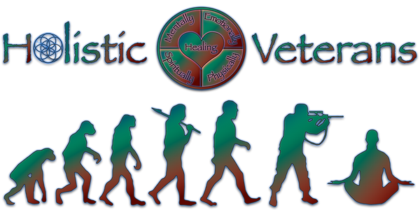 HV Logo rainbow.png