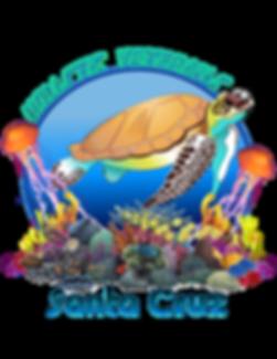 HV - Turtle SC.png