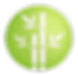 Bamboo+Green+Icon-01_edited.png