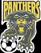 Wayne Panthers Pride File.png