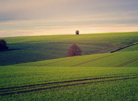 Ako sa správne rozhodnúť pri výbere pozemku?