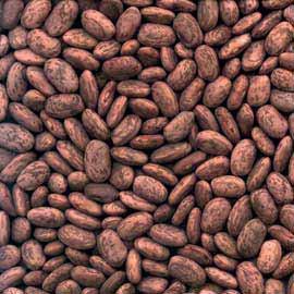 Pinto Beans 100g (Org)