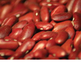 Red Kidney Beans 100g (Org)