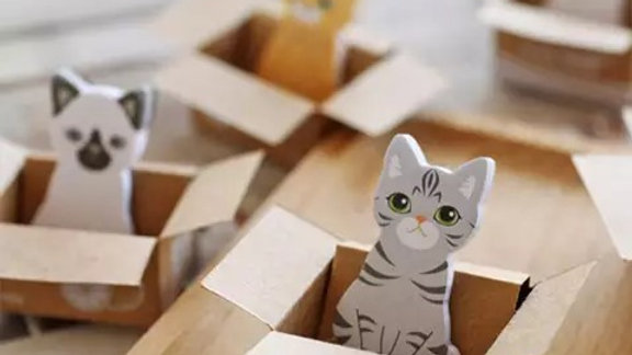 Cat in a Box Mini Sticky Notes Page Markers Bookmarks