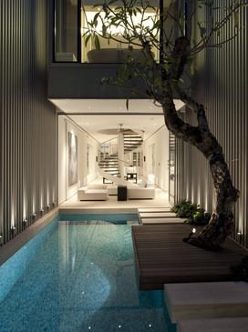 Arbre au bord d'une piscine intérieure