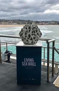Living Seawall Tile display copy_edited.jpg