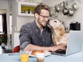 Dicas da neurociência para ser produtivo em home office