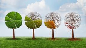16/3 - Dia Nacional de Conscientização sobre as Mudanças Climáticas: Grupo Farrapos apoia medidas da