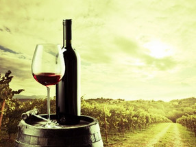 Produção de vinho no Brasil se recupera e cresce mais de 169% em 2017