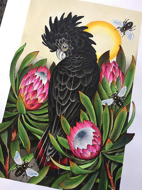 """Black Cockatoo"" by Adrian Hing"