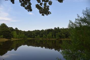 Private Pond.jpg