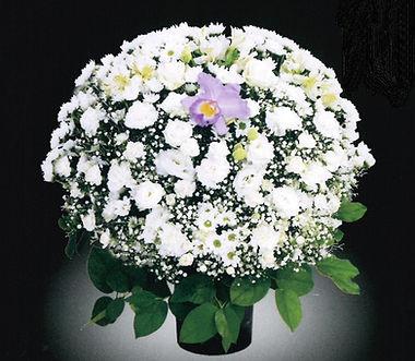 供花 洋花(ホワイト)15,0001.jpg