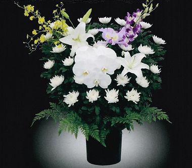 供花 和菊20,000.jpg