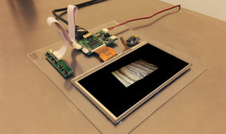 LCD con 3d de microscopia de madera